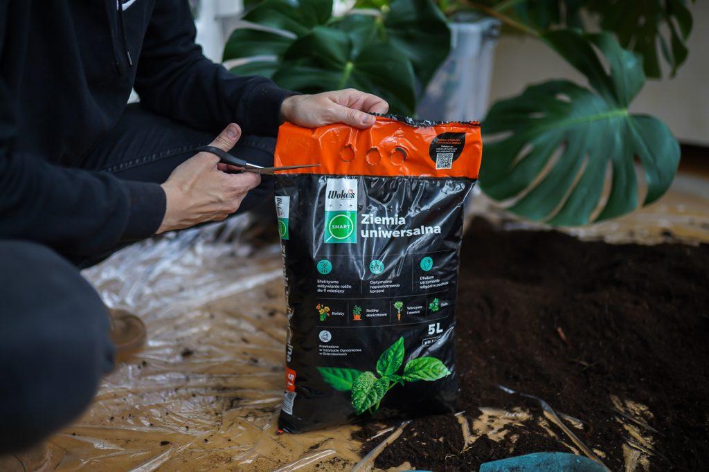 jaką wybrać ziemię dla roślin doniczkowych