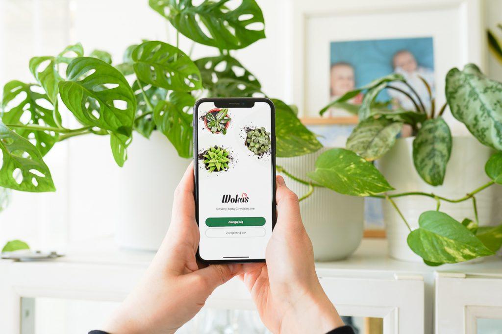 aplikacja pomagająca w uprawie roślin domowych